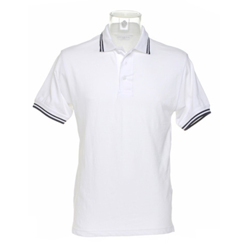 Classic Fit Tipped Collar Polo