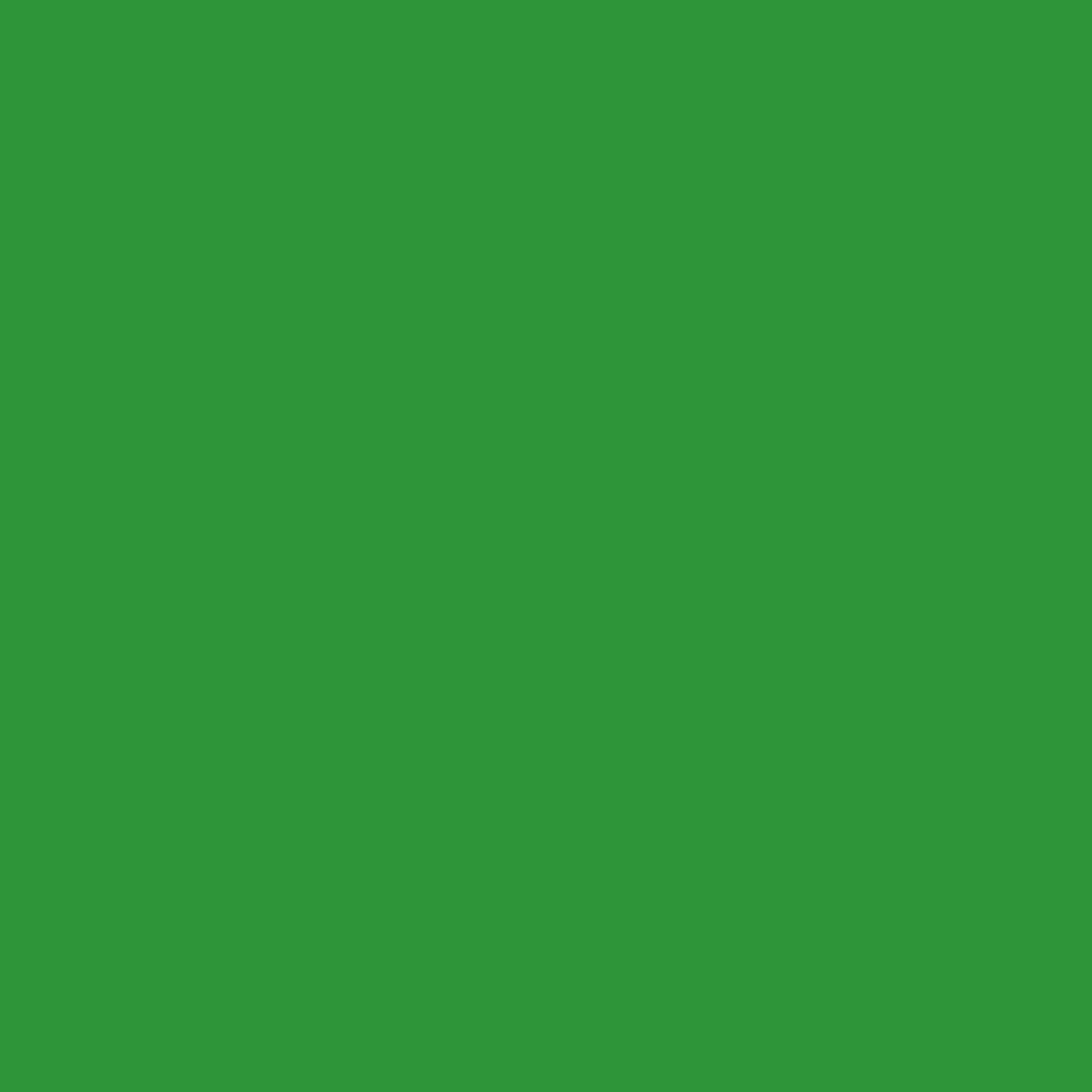 Stahls Flexfolie premium hellgrün, 50cm x 1m