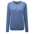 Ladies? HD raglan sweatshirt