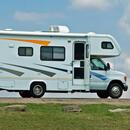 ORACAL 961GRA Caravan Premium Premium Cast 219 Lime Yellow Shine 126 cm