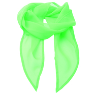 Women`s Colors Collection Chiffon Scarf