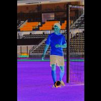 Basic Shorts Borussia