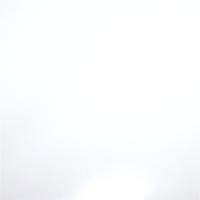 Selectsign Flockfolie weiß, 50cm x 1m