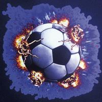 Stahls Digitaldruckfolie SportsFilm, white, 50 cm x 1m