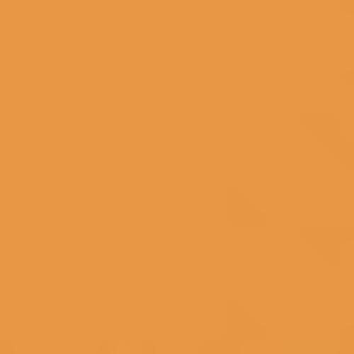 Steel flex foil Premium Plus fluo orange, 50cm x 1m