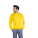 Men´s Sweater 100
