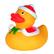 Squeak duck Christmas